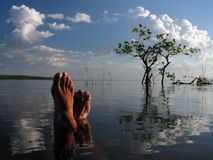 River. Feet in the river Tapajos - Amazônia - Brazil Royalty Free Stock Photo