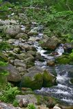 River 2. The river in the mountine. the picture made in summer in Tatra mountaines, Poland Stock Photography