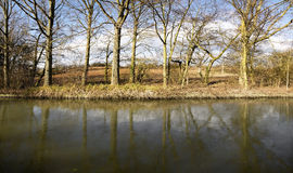River. The banks of a river or canal, with bushes and trees Stock Photography