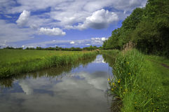 River. The banks of a river, with bushes and trees Stock Image