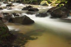 River. A river water flowing through a tropical rainforest Stock Photos