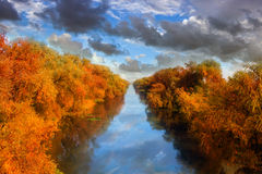 River. Clouds over river and orange tree Royalty Free Stock Photography
