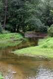 The river. Current in dense wood Royalty Free Stock Photography