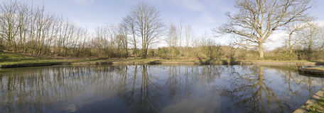 River. The banks of a river, with bushes and trees Stock Photography