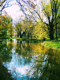 River. A river enclosed by trees Stock Images