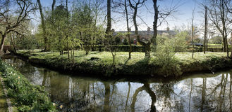 River. The banks of a river, with bushes and trees Royalty Free Stock Photography