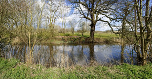 River. The banks of a river, with bushes and trees Royalty Free Stock Photos