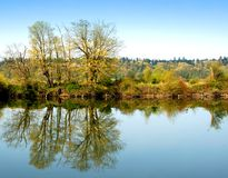 On the River. On the bank of the Snohomish River Royalty Free Stock Photography