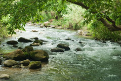 River. Mountain river on the israel north stock image