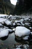 River. In the Tatra mountain Stock Images