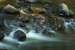 River. With calm water and stone Royalty Free Stock Images