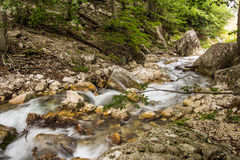 River on abruzzo forest Stock Photos
