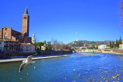 River Adige,Verona Italy Royalty Free Stock Photography