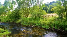 The River Aire. Stock Photo