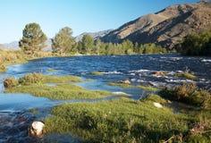 River Alash Royalty Free Stock Image