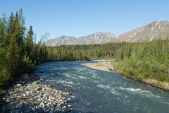 River through Alaska Royalty Free Stock Images