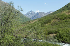 River through Alaska Royalty Free Stock Images