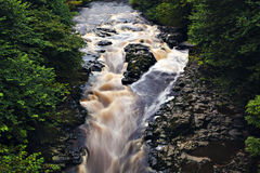 River Almond Stock Photography