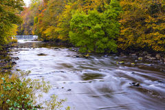 River Almond with waterfall at autumn time Royalty Free Stock Photo