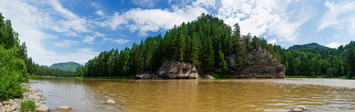 River along the mountain. Panorama of mountain river in the forest Stock Photos