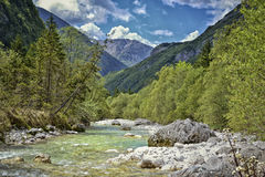 River in alps royalty free stock photos
