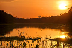 River in the Amazon Rainforest at dusk, Peru, South America Royalty Free Stock Image