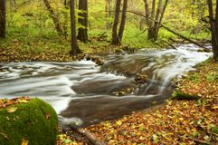 River amongst autumn trees Stock Image
