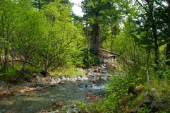 River amongst stone in valley mountains Stock Photography