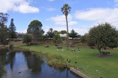 River Angas in Strathalbyn South Australia. Tourist River Angas in Strathalbyn that was settled in 1839 by Scottish immigrants on land that was a meeting place royalty free stock images