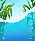 River and aquatic plants Stock Photo