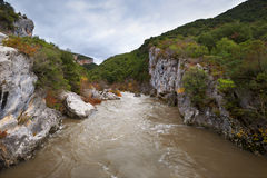 The river in Arbayun canyon Stock Photography
