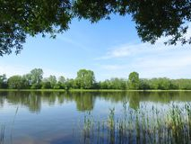 River Atmata and beautiful trees in spring, Lithuania Stock Photography