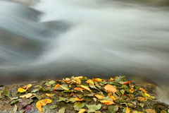 River in autumn. White River in autumn in Bulgarian mountains royalty free stock photography