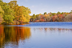 River in the Autumn. Connetquot river in the Autumn. Connetquot River State Park Preserve located in Long Island, New York Stock Photography