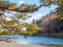 River in autumn in Arashiyama, Japan. River with colorful leaves in autumn season in Arashiyama region, Kyoto, Japan Royalty Free Stock Image