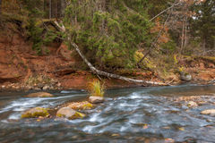 River in autumn. Royalty Free Stock Images