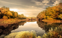 River in the autumn Royalty Free Stock Photo