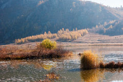 River in the autumn. China's Inner Mongolia xinganmeng chaihe Stock Photo