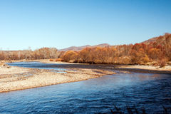 River in the autumn. China's Inner Mongolia xinganmeng chaihe Royalty Free Stock Photography
