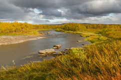 River with autumn colors. Small river in autumn, Finnmark Norway Royalty Free Stock Photography