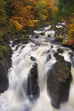 River through autumn colours at the Hermitage, Scotland stock images