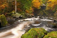 River through autumn colours in Scotland royalty free stock image