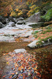 River in autumn forest. Scenic view of river in autumn forest with boulders in background Royalty Free Stock Photo