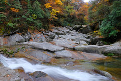 River in autumn forest. River flowing over rocks in autumn forest Stock Photo