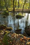 River in Autumn Forest. Autumn Landscape  with River and Colorful Leaves on Stones Stock Photo