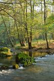 River in Autumn Forest. Autumn Landscape  with Mountain River in Colorful Forest Royalty Free Stock Photos