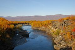 River in autumn landscape Royalty Free Stock Images