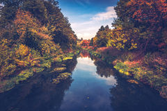 The river in autumn. Autumn landscape, river and colorful leaves on the trees Stock Photos