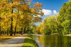 River in autumn park Stock Photos
