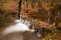 River in Autumn. Season at Geres National Park, Portugal stock image
